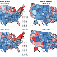 A map of bladder cancer mortality rates among white men and women