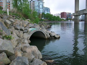 Stormwater pipe draining into the Willamette River, Oreg. Downtown Portland is in the background.