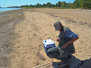 USGS scientist working on the shore of Lake Michigan.