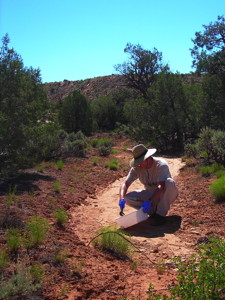 USGS scientist collecting a sample of sediment