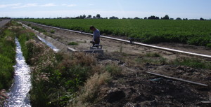 USGS scientist measuring water quality from an irrigation ditch