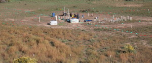 View of a well field at the groundwater contamination site