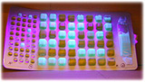 Lab tests for ecoli bacteria in water uses ultraviolet light to display the results.
